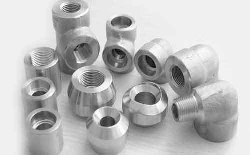 Stainless Steel 309H Forged Fittings
